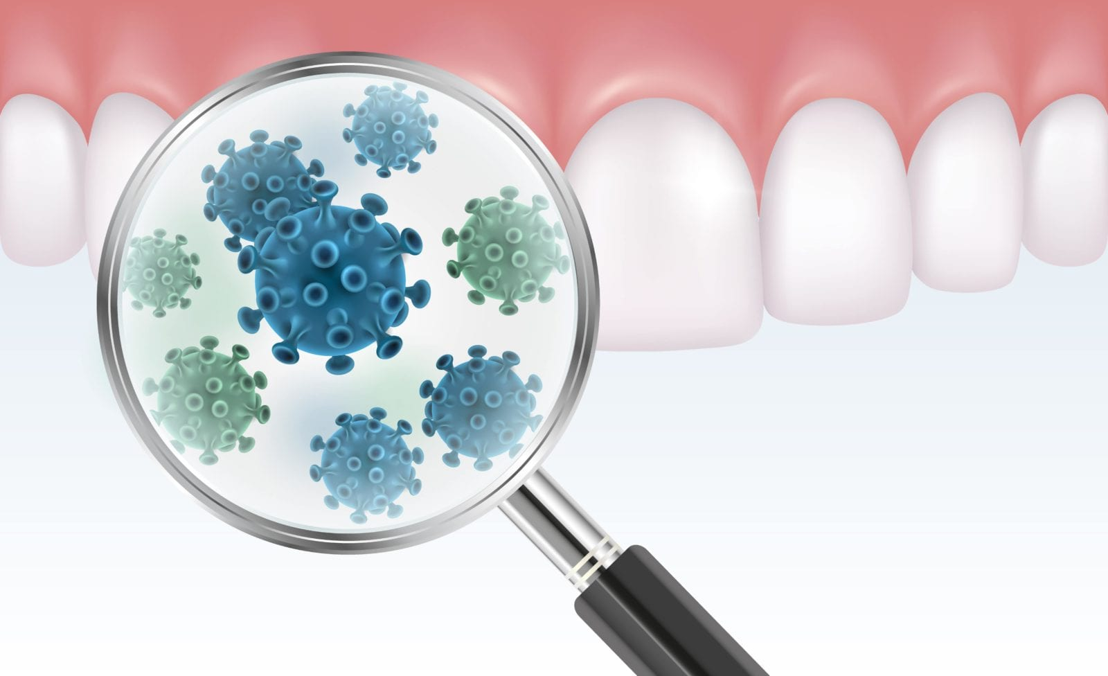 bacteria on teeth